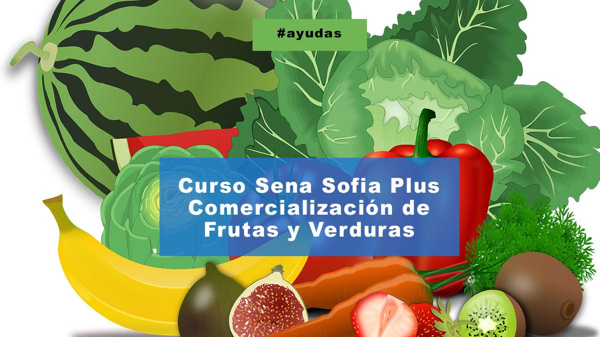 Curso Sena Sofia Plus Comercialización de Frutas y Verduras